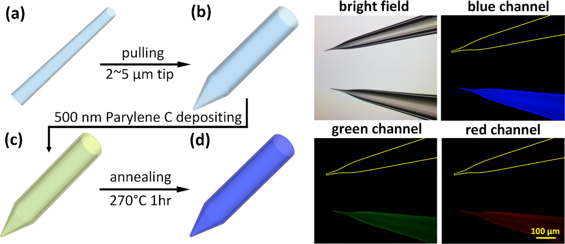 Fluorescently visible Parylene-C coated pipette
